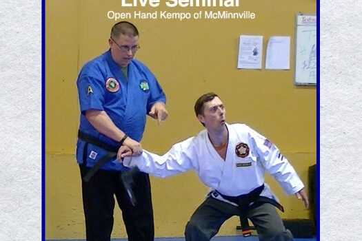 Sensei Mish – McMinnville Seminar
